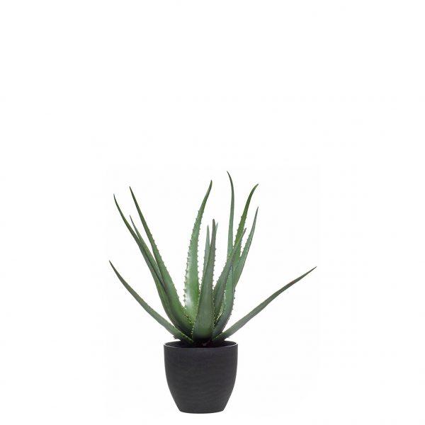Planta artificial - Aloes 17lvs