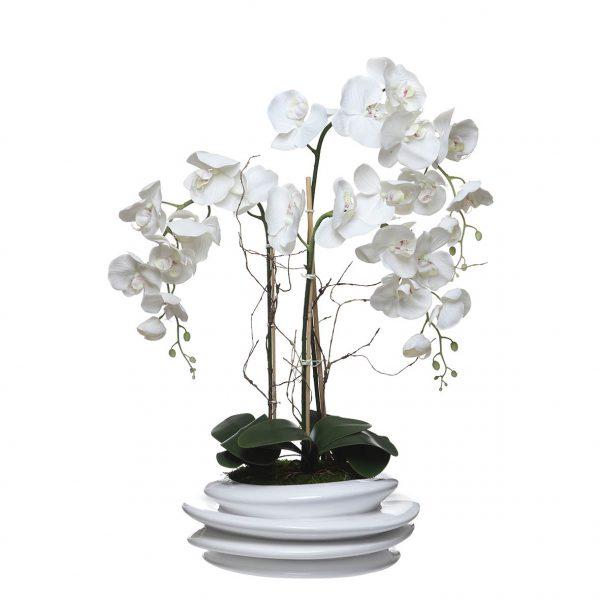 Orquídea 3 Caules Concertina - 23102