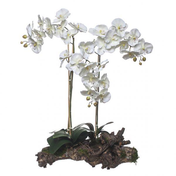 Orquídea 3 Caules Tronco Natural - 23109
