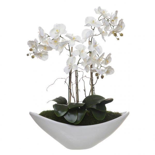 Orquídea 3 Caules em Barco Liso - 23122