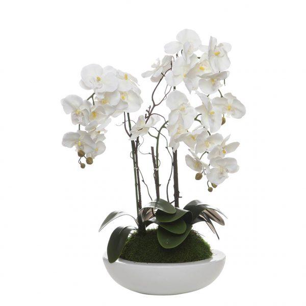 Orquídea 3 Caules em Taça Esfera - 23121